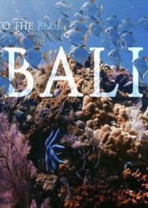 Out of the Back & Into the Blue. Chapter #13: BALI.<p>(Spain / Indonesia)