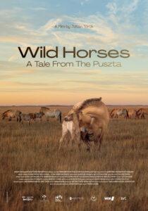 WILD HORSES<p>(Hungary)